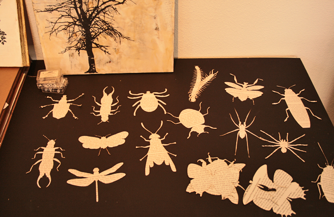 Shannon Amidon Studio Visit -  insect silhouettes - photo Marie Cameron 2015