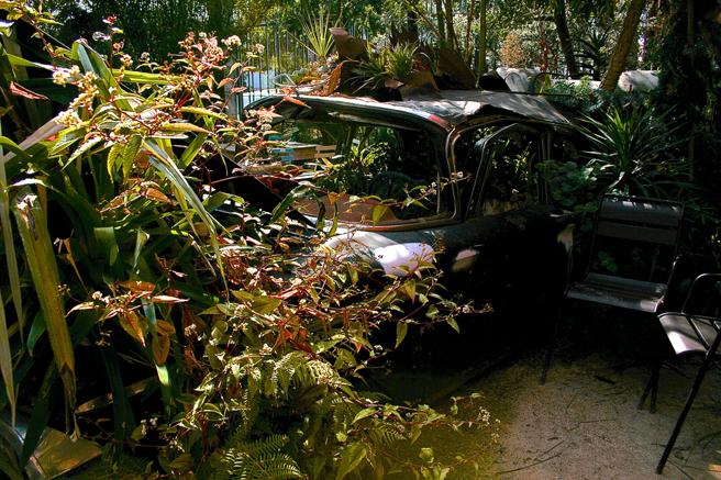 Flora Grubb Gardens - carden- photo Marie Cameron 2015