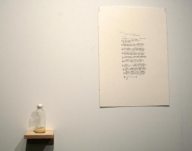 art SV SF - Michael Turelli - Pablo Ortiz - The Conversation - UC Davis - photo Marie Cameron 2015