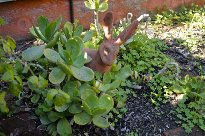 LGAA - Plein Air Painters - Stonesifer : Arzie - Cast Rabbit in the Succulents - photo Marie Cameron 2016