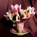 Tulip Demitasse 2 - Marie Cameron 2016