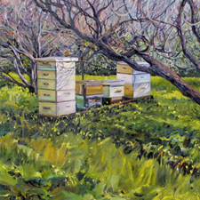 Keeping Bees in the Orchard - Marie Cameron - oil on canvas - 18 X 24 inches - 2016 sm