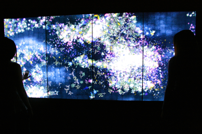 teamLab - Pace - 35 - photo Marie Cameron 2016