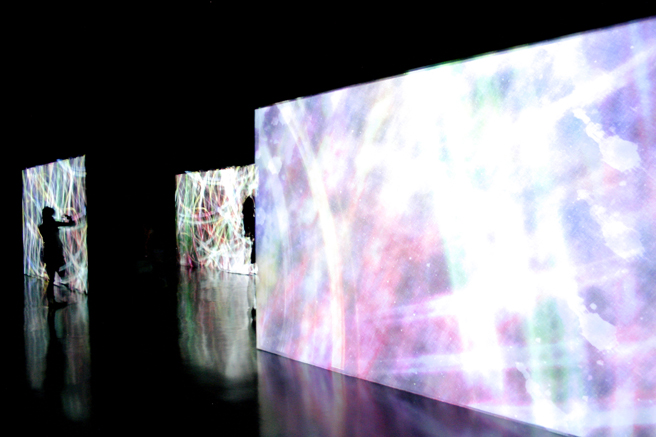 teamLab at Pace Art + Technology exhibition 15 - photo Marie Cameron 2016