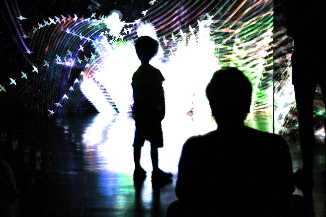 teamLab at Pace Art + Technology exhibition 19 - photo Marie Cameron 2016