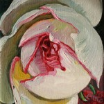 Rosebud I - Marie Cameron - oil on canvas - 4x4in 2013 sm