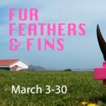 Pink Rino - Fur Feathers Fins - PAL - sm