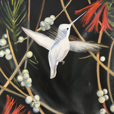 Fade to White - Annas Hummingbird - oil and encaustic on panel - 6x6 in - Marie Cameron - 2017 sm