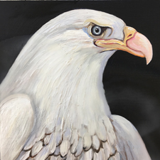 Fade to White - Bald Eagle- oil and encaustic on panel - 6x6 in - Marie Cameron - 2017 sm