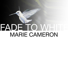 Fade to White Business Card Front - no logo, no nothing sm