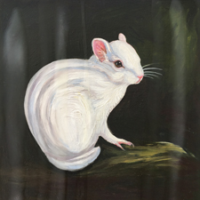 Fade to White - Chipmunk - oil and encaustic on panel - 6x6 in - Marie Cameron - 2017 sm