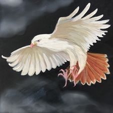 Fade to White - Red-tailed Hawk - oil and encaustic on panel - 6x6 in - Marie Cameron - 2017 sm