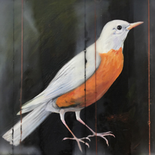 Fade to White - Robin - oil and encaustic on panel - 6x6 in - Marie Cameron - 2017sm