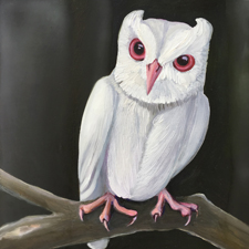 Fade to White - Screech Owl - oil and encaustic on panel - 6x6 in - Marie Cameron- 2017 sm