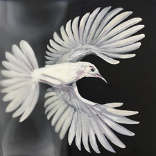 Fade to White - Scrub Jay II - oil and encaustic on panel - 6x6 in - Marie Cameron - 2017 sm