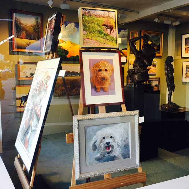 Dogs Gallery 24