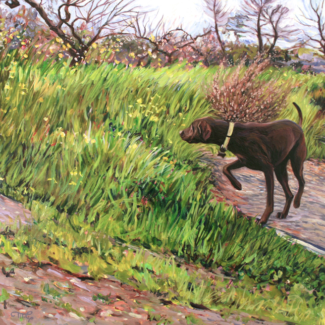 Retriever in the Orchard - Marie Cameron -  oil on board -12x12 inches - 2016 web