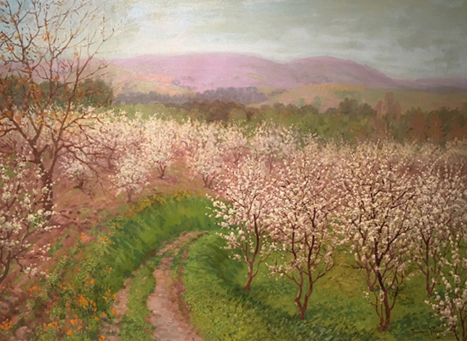 Theodore Wores - Under the California Sun - Triton Museum of Art - photo by Marie Cameron 2018 - Road by Blossoming Orchard - 1925 - oil on canvas