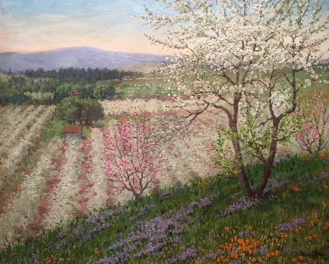 Theodore Wores - Under the California Sun - Triton Museum of Art - photo by Marie Cameron 2018 - Spring Blosoms of Los Gatos - 1925- oil on canvas