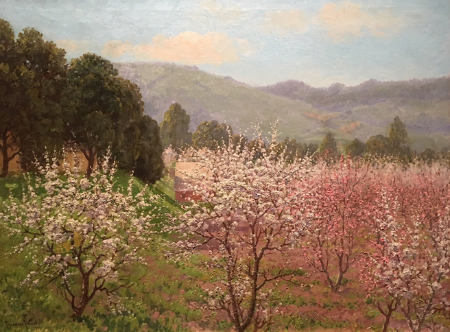 Theodore Wores - Under the California Sun - Triton Museum of Art - photo by Marie Cameron 2018 - Tree Blossoms - 1920 - oil on canvas