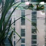 MarieCameronBeijingGrey2008