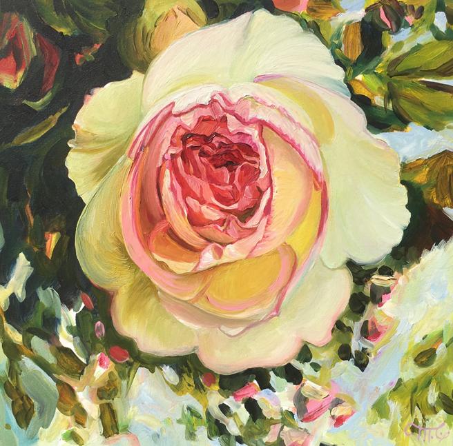 Eden Rose I - Marie Cameron - oil on board - 6x6in - 2019 web
