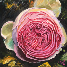 Eden Rose II - Marie Cameron - oil on board - 6x6in - 2019 web sm