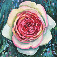 Eden Rose IV - Marie Cameron - oil on board - 6x6in - 2019 web sm