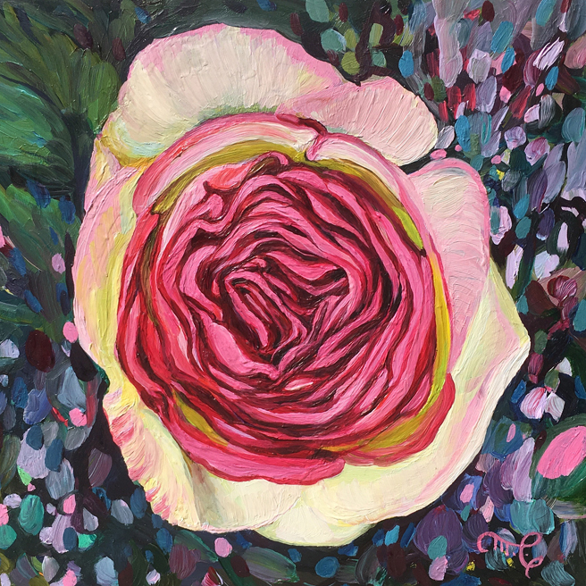 Eden Rose VI - Marie Cameron - oil on board - 6x6in - 2019 web