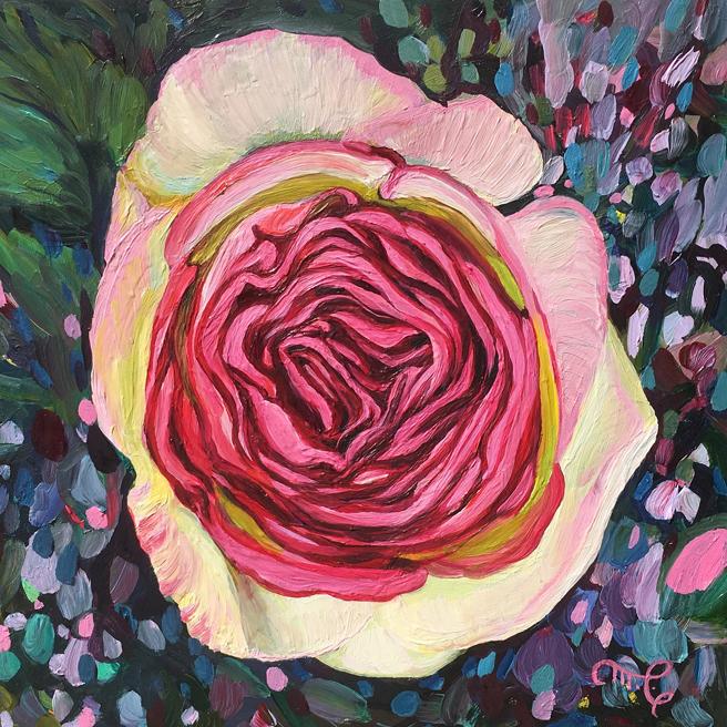 Eden Rose VI - Marie Cameron - oil on board - 6x6in - 2019 web